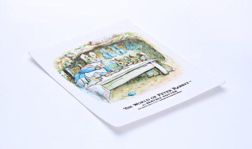 不織布成形品(印刷合わせ)